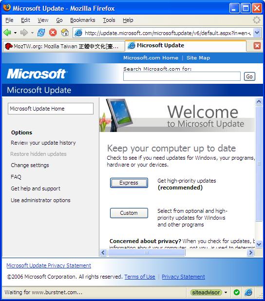 User Internet Explorer in Firefox